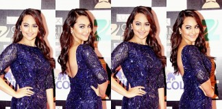 Who Wore What At Zee Cine Awards 2016