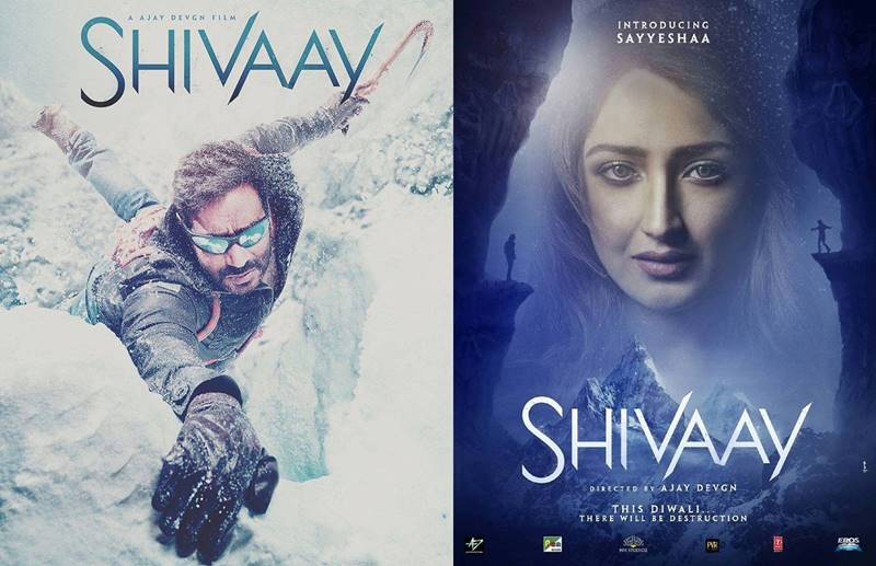 Poll of the Day | War of the first look- Mohenjo Daro Vs Rustom Vs Shivaay Vs Kaabil- Shivaay First Look