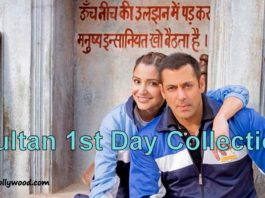 Sultan 1st Day Collection   Historical Opening Day At Box Office