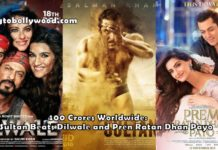 Sultan Beats 3 Idiots, Dilwale And PRDP To Become 5th Highest Worldwide Grosser