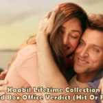 Kaabil Total Lifetime Collection And Box Office Verdict (Hit Or Flop)