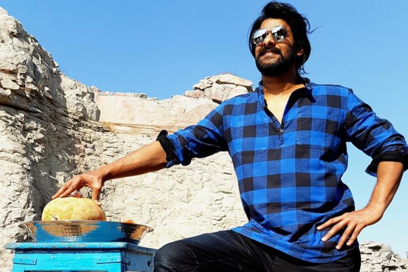10 Lesser Known but Must-Know Facts about Prabhas- 6