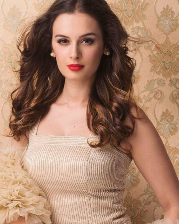 Evelyn Sharma's natural beauty 2