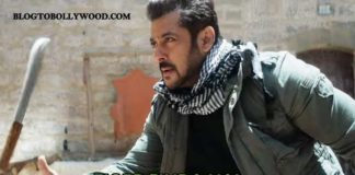 Tiger Zinda Hai worldwide collection grosses 300 crores, become top grosser of 2017