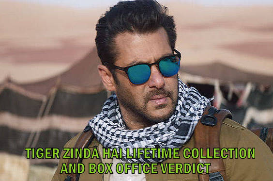Tiger Zinda Hai Total Lifetime Collection, Box Office Verdict (Hit Or Flop)