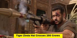 Tiger Zinda Hai 10th Day Collection: Crosses 250 Crores In India