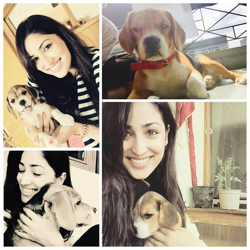 These Celeb Pet Selfies are so cute they will melt your heart right out!- yami 1