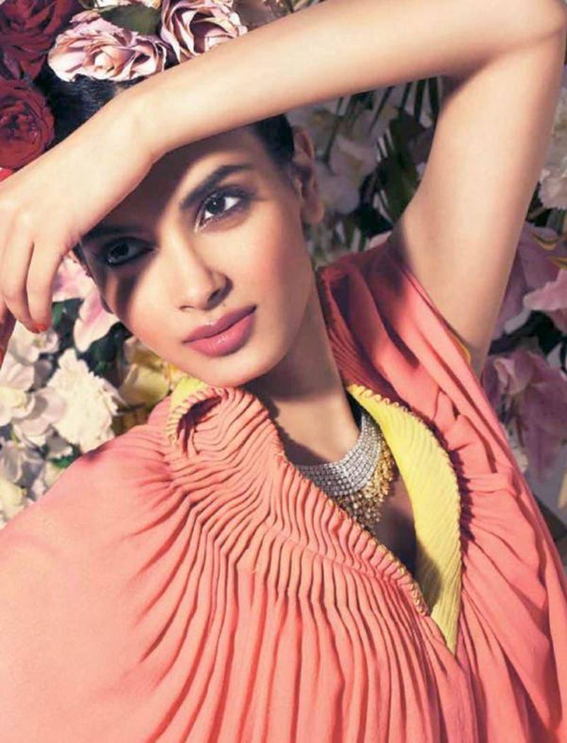 10 Beautiful Pictures of Diana Penty who is making her comeback with Happy Bhag Jayegi- Diana Shoot 3
