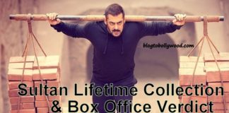 Sultan Total Lifetime Collection And Box Office Verdict (Hit Or Flop)