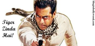 Tiger Zinda Hai | That's the title of Ek Tha Tiger Sequel and Salman Khan will be in it!
