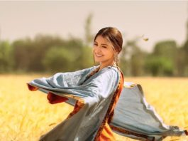 Phillauri Lifetime Collection, Box Office Verdict: Anushka Sharma's Film Failed At Box Office