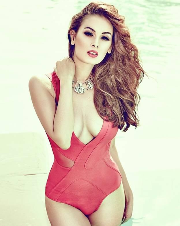 bikini pics of Evelyn Sharma 4