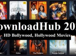 DownloadHub 2020: Download Dual Audio 300MB Hollywood, Bollywood Movies