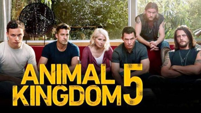 Animal Kingdom Season 5: Release Date and Time, How to Stream, Watch